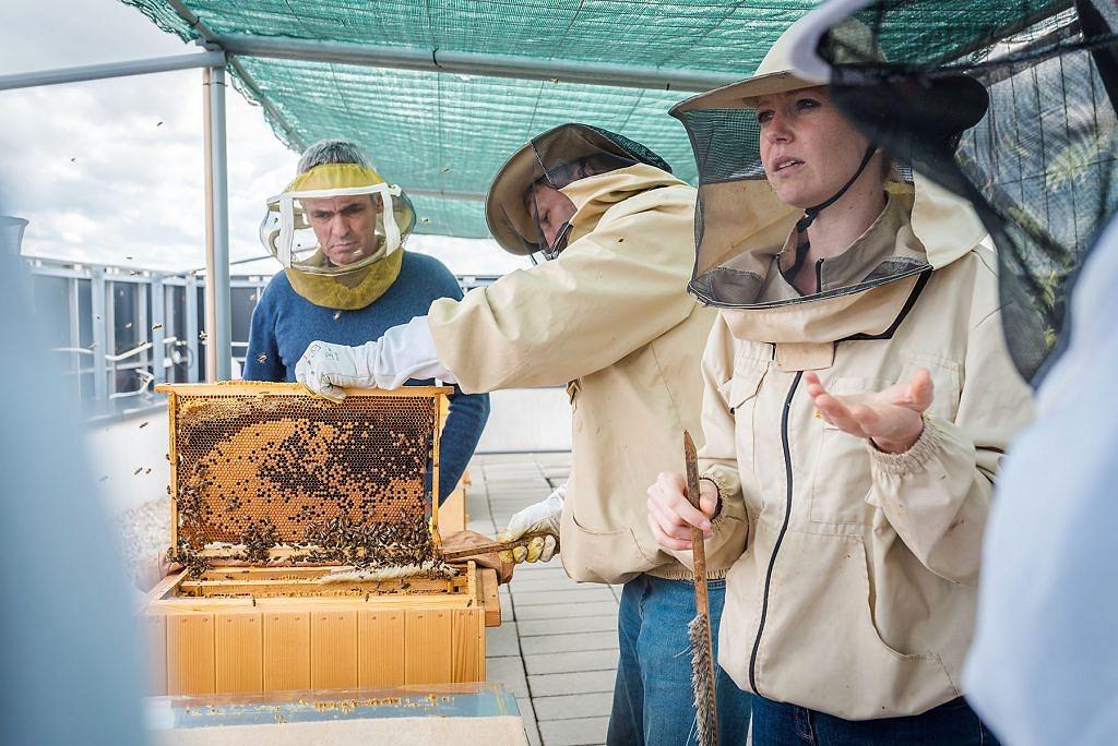Včelársky workshop v hotel NG Gate One - workshop, včely - eventovy fotograf